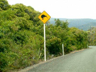 Verkehrsschild Kiwi