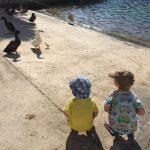 Reisen mit Kindern: Reisebericht Menorca Teil 5